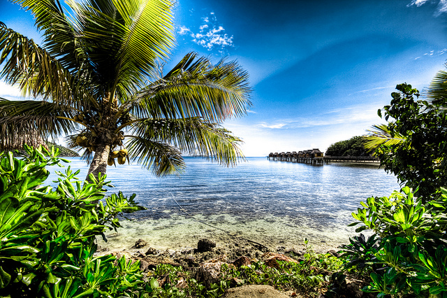Fiji by Adam Selwood
